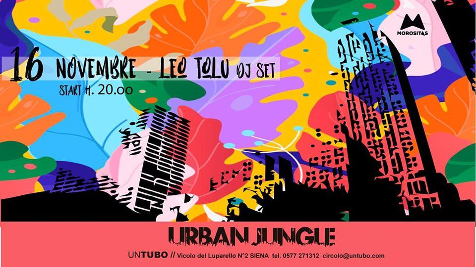 urban jungle novembre